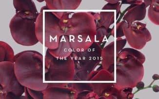 цвет года - марсала